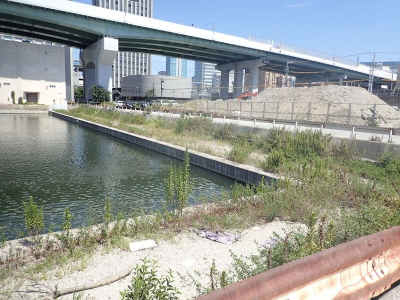 中川運河(堀止)緑地整備工